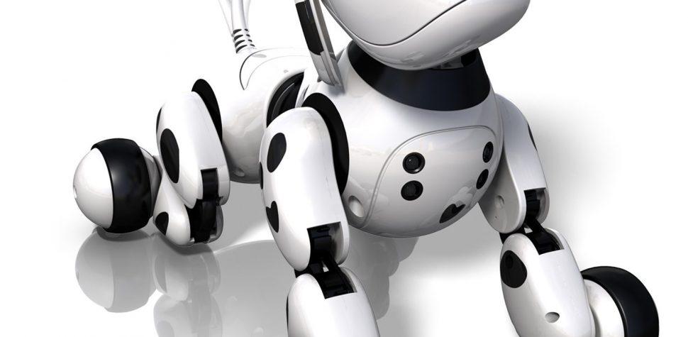 Robot jouet : conseils pour réaliser un achat malin photo 3