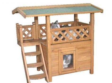 Quelle est en ce moment la meilleure maison pour chat de l'année photo 3
